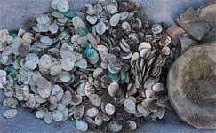 Клад монет времен Ивана Грозного